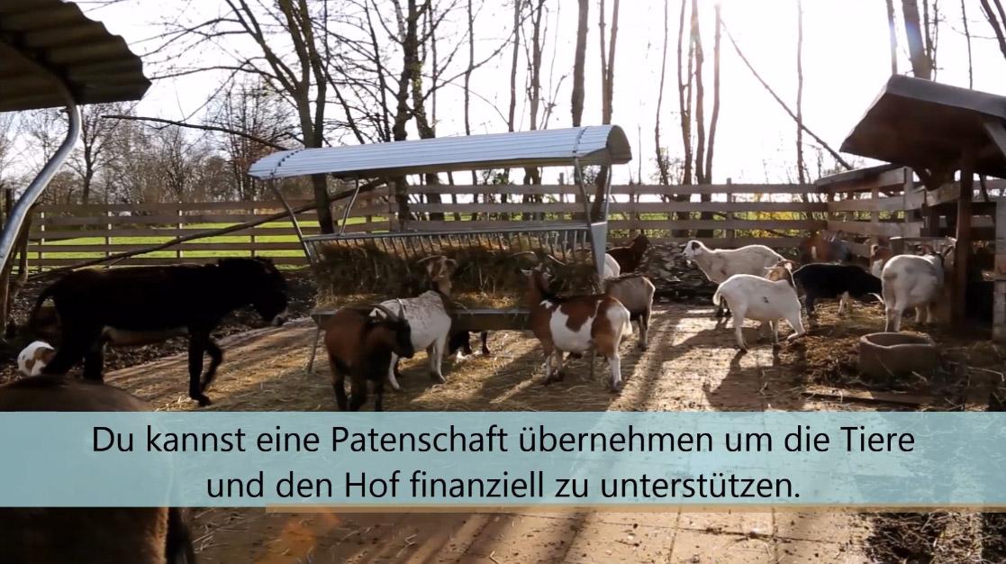 standpunktev-azubis-gollachostheim.jpg